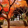Photos: 東漸寺
