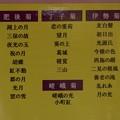 Photos: 向島百花園 古典菊展