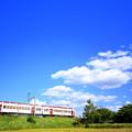 写真: 青空といちご