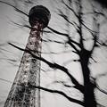 Photos: 通りすがりの横浜マリンタワー
