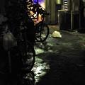 Photos: 精霊流しの夜に#9
