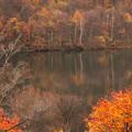 写真: 晩秋の朝里