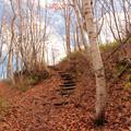 Photos: 晩秋の登山道