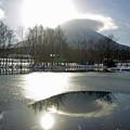 初冬の湧水池