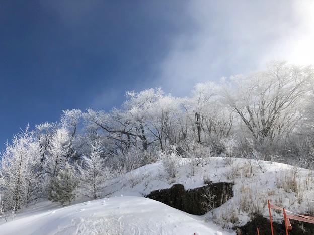 スキー場に住む