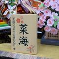Photos: 雛用名前木札A