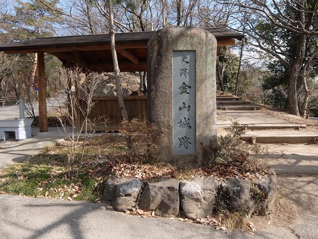 太田金山城跡(1)