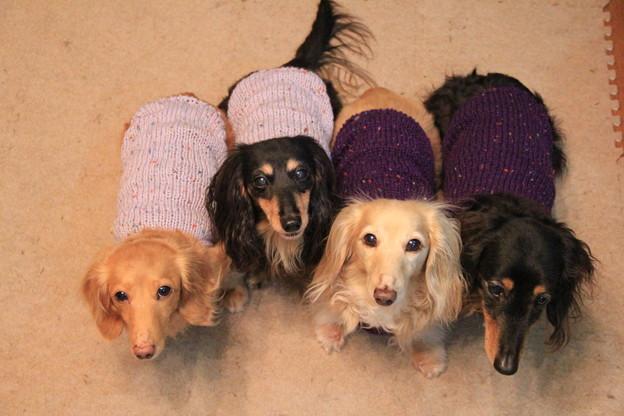 ママの手編みニット着てみたよ