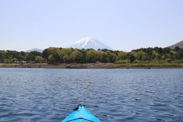 富士山を眺めながらパドリング