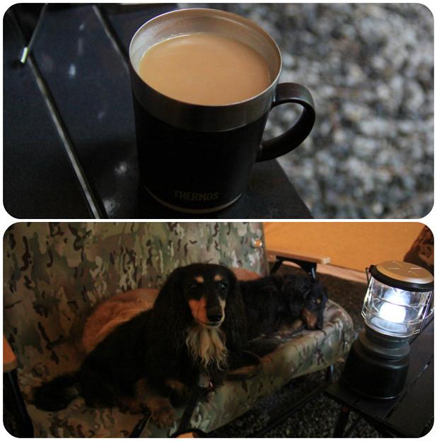 コーヒー飲みながらのんびり