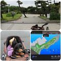 写真: 城ヶ島公園