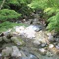 写真: 道志川