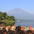写真: 富士山をバックに