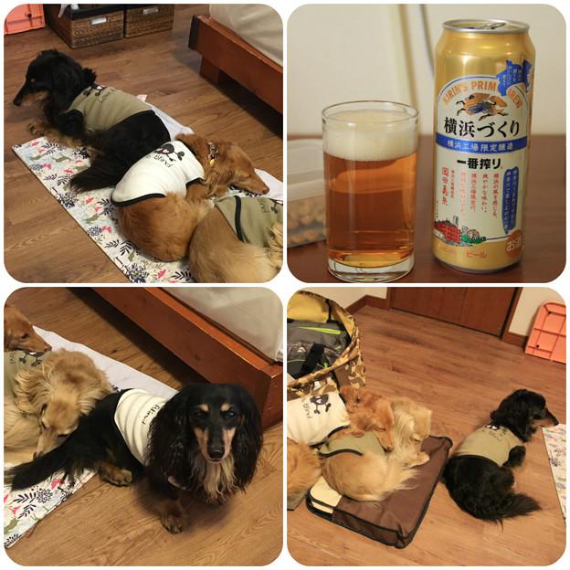 Photos: 風呂上がりのビール