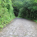 写真: 坂を下ると滝の下サイト