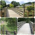 Photos: てくてく橋~ぼっちら橋