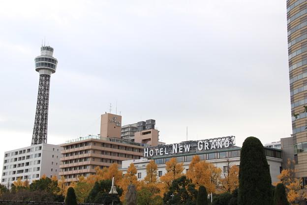 黄葉とマリンタワーとホテルニューグランド(2018年12月2日)