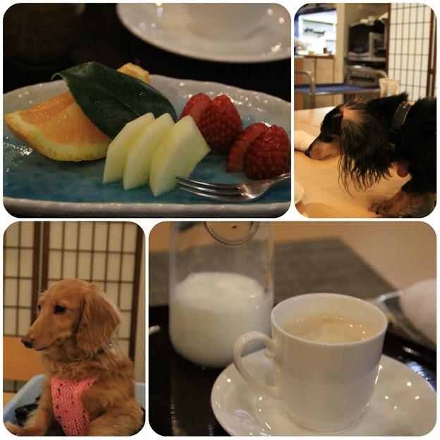 季節の果物_コーヒー