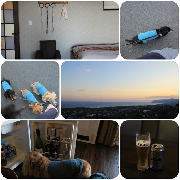海を眺めながらビール