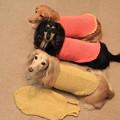Photos: ママの手編み似合ってるかな