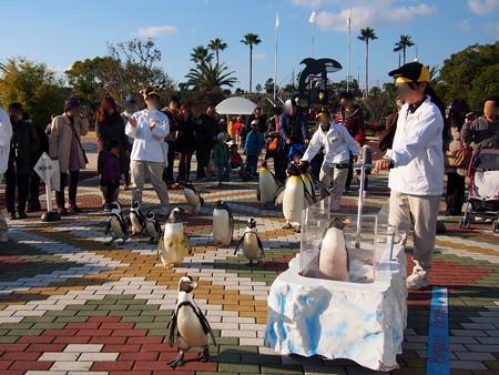 20131207 アドベン ペンギンパレード38