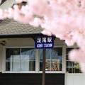 Photos: 春の足尾