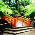 写真: 鶯橋