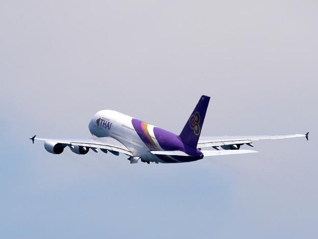 Photos: 大飛翔タイ