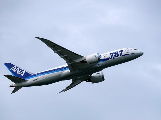 Photos: Fly with B787
