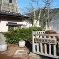 Photos: 城の崎にて
