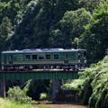 Photos: 総緑線
