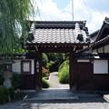 Photos: 義仲寺