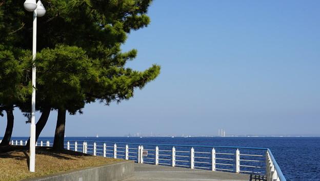DSC07644八景島春散歩