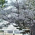 Photos: DSC07680-01