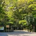写真: DSC08033-01豊橋・鳥羽・お伊勢参りの旅