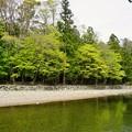 写真: DSC08076-01豊橋・鳥羽・お伊勢参りの旅