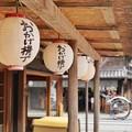 DSC08143-01豊橋・鳥羽・お伊勢参りの旅