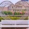 横浜カメラ散歩DSC09814-01-01