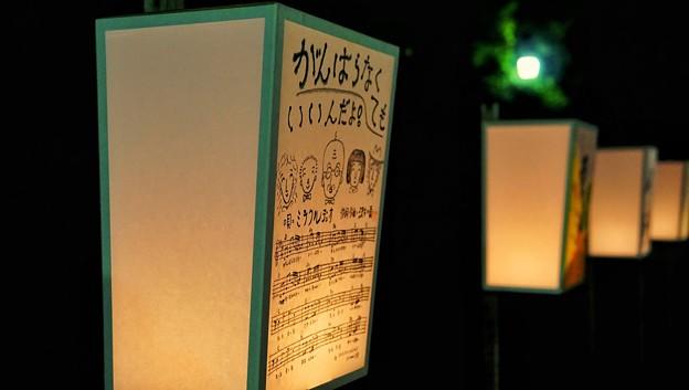 鎌倉ぼんぼり祭9