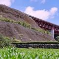 写真: 茶畑と東名と