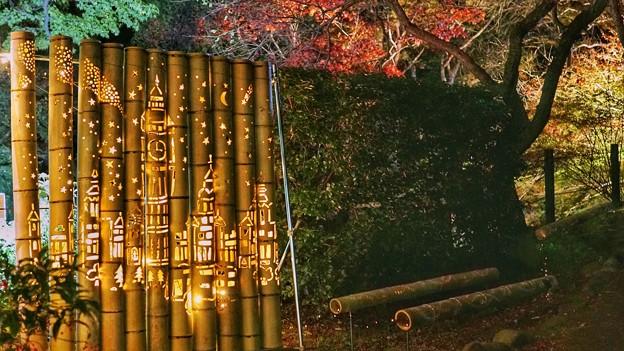 熱海梅園紅葉まつり3