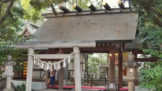 川越氷川神社 DSC02290-01