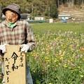Photos: TON04157-01花畑と桜並木と伊豆の旅