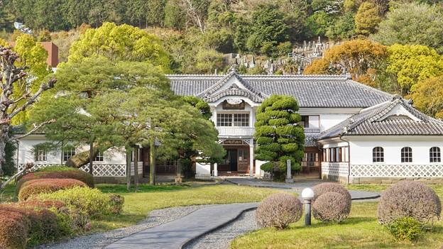 TON04220-01花畑と桜並木と伊豆の旅