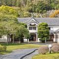 Photos: TON04220-01花畑と桜並木と伊豆の旅