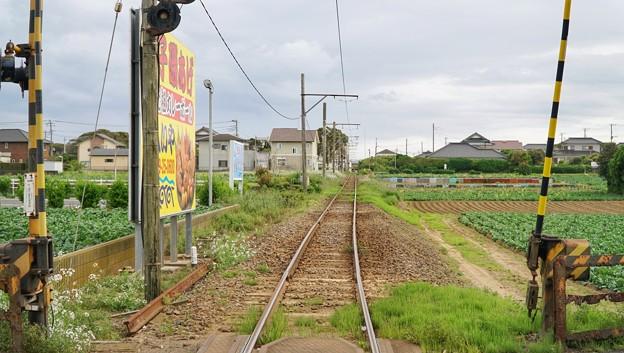 TON04955銚子・犬吠埼