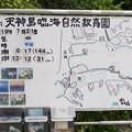Photos: TON05494天神島(佐島)