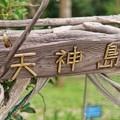Photos: TON05498天神島(佐島)
