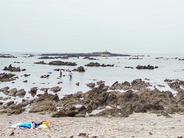 TON05504天神島(佐島)
