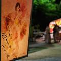 Photos: TON05739鎌倉ぼんぼり祭り